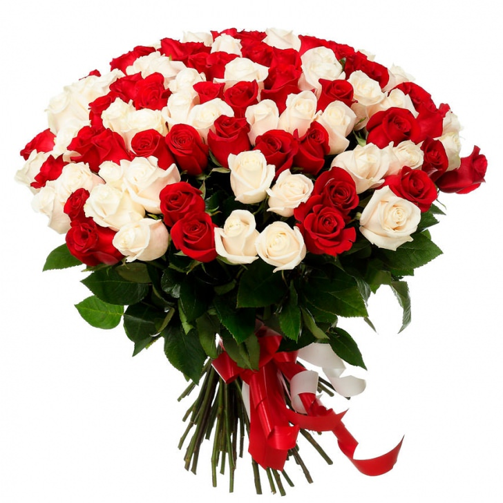 Розы Россия микс